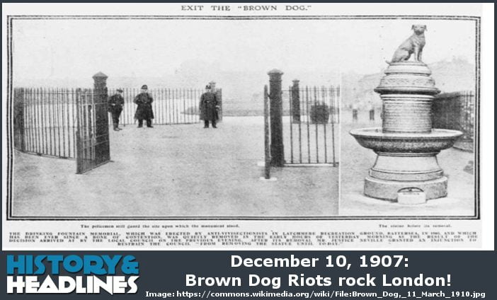 Brown Dog Riots